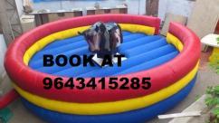 CALL FOR BULLRIDE IN NOIDA  9643415285