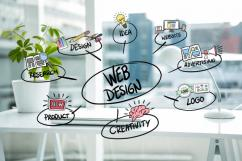 Freelance Website Designer in Delhi