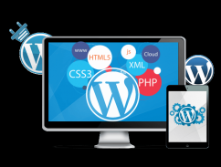 WordPress Freelancer Developer in Noida, Greater Noida, Delhi