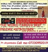INDIA BEST LOVE VASHIKARN SPECIALIST ASTROLOGER 07230952019