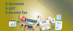 E-Accounting Training Institute in Noida