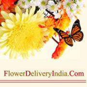 Flower Delivery in India for Delivering Happiness on Special Days