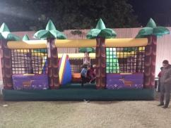 Jungle Bouncy on rent DELHI NCR