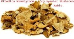 Dry Oyster Mushroo