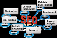 Expert SEO Services in Melbourne