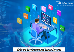 Affordable Custom Software Development and Design Services in USA