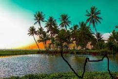 Backwaters, Beaches & Hills of Kerala