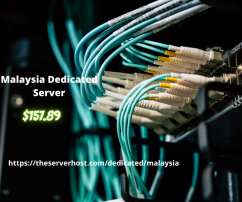 Malaysia Dedicated Server Provider By TheServerHost