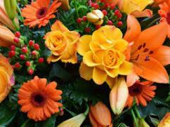 Florist in Mumbai