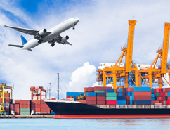 Indian Import Data Know Details of Importers