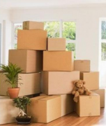 Movers And Packers In Jayanagar
