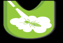 Pest Control Services In Chennai