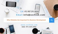 Why Websites Are Important For Business Development - Sochtek