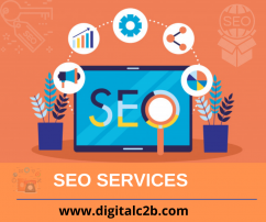 Digital Marketing Company in Delhi DigitalC2B