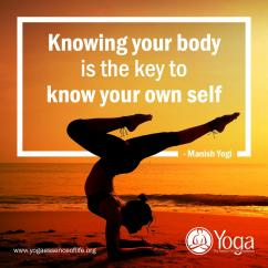 200 Hours Yoga Ttc in Noida, India with Manish Yogi