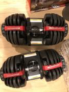 Dumbbells in Fantastic Condition