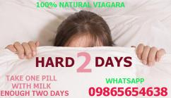 HARD2DAYS/HERBAL VIAGARA