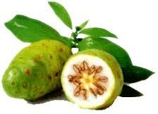 NONI JUICE WITH PRIVATE LABELING FOR MLM  (  Multi Level Marketing ) AND OTHERS