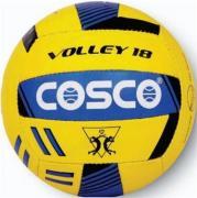 Cosco Flight Volleyball