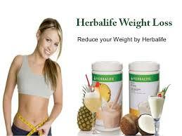 herbalife independent distributor in Faridabad