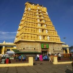 7 Days Trip from Bangalore Mysore  Kukke  Udipi  Kollur  Murudeshwar  Gokar
