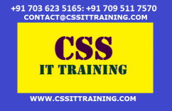Oracle Scm Training - CSS