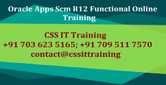 Oracle Scm Functional Consultant Training