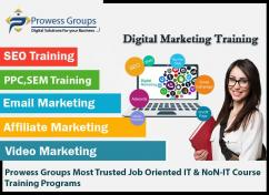 With our Search Engine Optimization Course ProwessGroups
