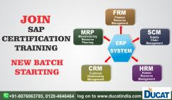 SAP FICO TRAINING INSTITUTE IN NOIDA