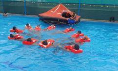 Zasha Maritime Best Merchant Navy Institute in Dehradun