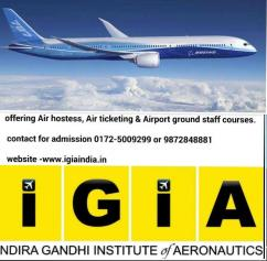Seeking Jobs in Aviation industry. join IGIA