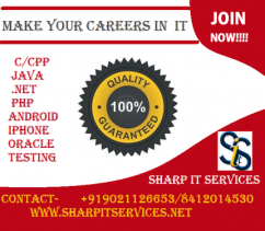 Java & .NET Training Institute Sharp IT Services Pune