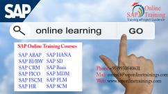 Sap Online Training Institute