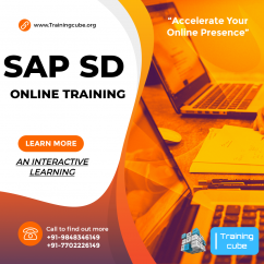 SAP SD Online Training in Hyderabad