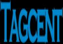 Salesforce Training & Job Support At Tagcent.