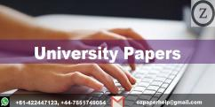 UNIVERSITY PAPERS  IT ASSIGNMENT HELP